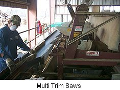 One of our multi-trim saws